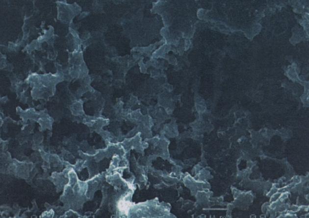 """SACMI DFS1, la soluzione per la """"manutenzione proattiva"""" degli stampi in resina porosa"""